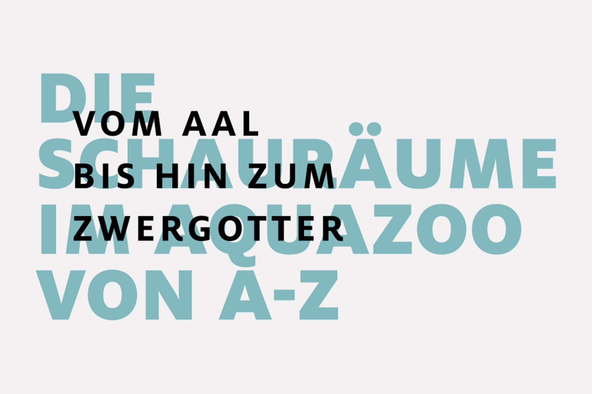 Aquazoo 002